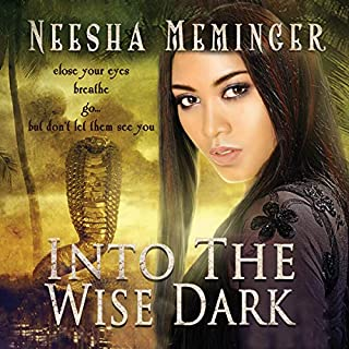 Into the Wise Dark audiobook cover art