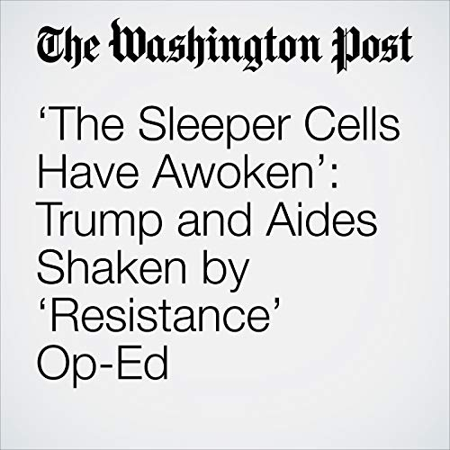 'The Sleeper Cells Have Awoken': Trump and Aides Shaken by 'Resistance' Op-Ed copertina
