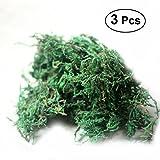 Winomo - 3 paquetes de musgo artificial, plantas de liquen verde falso para decoración del hogar, jardín, patio, 60 g/paquete