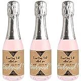 Rustic Kraft – Mini Wein- und Champagnerflaschen-Aufkleber – Will You
