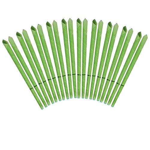 Incutex 20x sanft duftende Ohrkerzen mit verschiedenen Duft-Extrakten (grüner Tee) Ohrenkerzen, grün