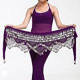 tggh Disfraz de danza del vientre, cadena de la cintura, bufanda, monedas, cinturón de danza, cinturón de danza, 12 colores para tu elección (color: morado plata, tamaño: tamaño libre)