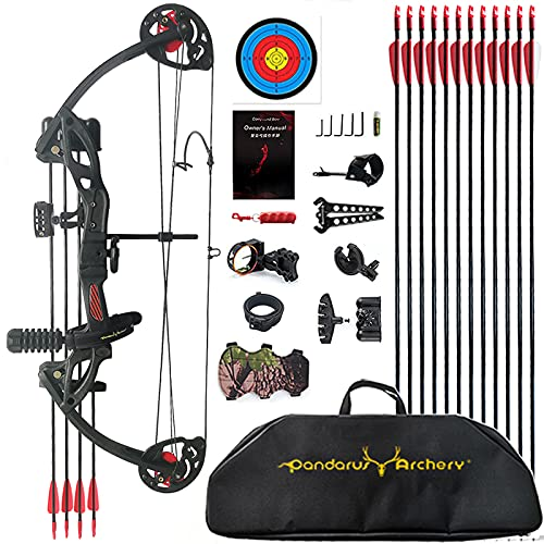 """PANDARUS Compound Bow Archery for Youth and Beginner, Right/Left Handed,19""""-28"""" Draw Length,15-29 Lbs Draw Weight, 260 fps, Package with Archery Hunting Equipment Carry Case(Black Right Handed Pro)"""