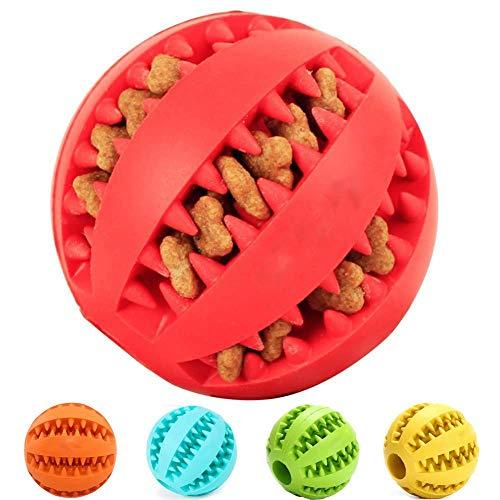 Pelota de goma Anjing para masticar perros, juguete para