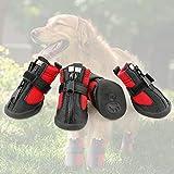 Grand Line Botas de Perro Impermeable Tamaño XS Pata Protector con Resistente al Desgaste Suela Antideslizante Conjunto de 4