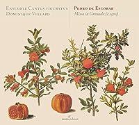 Giovanni Battista Costanzi: Cantata per Natale by Gambe di legno