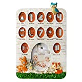 Fashioncraft Woodland Animals Baby's First Year Collage Photo Frame - Polyresin - Handpainted - 13 Openings - Gender Neutral for Boys and Girls - Baby Room Decor