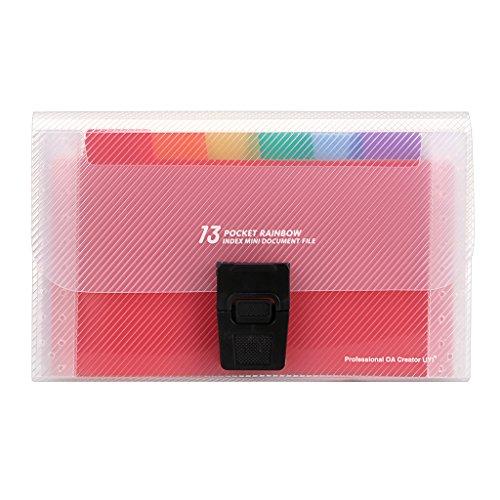 IGNPION Mini-Organizer mit 13 Fächern für Quittungen, Akten, Rechnungen. Dokumentenmappe für das Büro, zu Hause oder die Schule. 18 cm x 3 cm x 11 cm, bunt.
