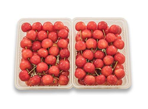 フルーツなかやま 佐藤錦さくらんぼ 特秀 2Lサイズ500g×2パック 計1000g 山形産 露地栽培