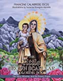 The little Brown Scapular Coloring Book: The Story, Miracles, and the Rosary Prayer by OCDS Francine Calabrese (2016-05-03)