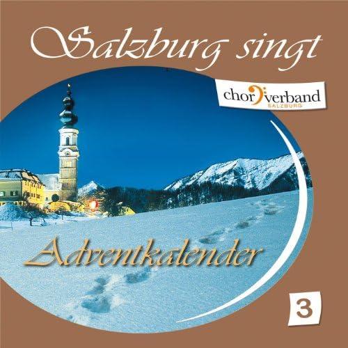 Diverse Interpreten aus Salzburg