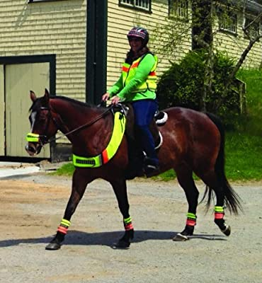 Safe Riders Hi Viz Horse Gear Road and Hunting Season Chest Plate