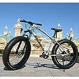 RNNTK Adulto Fat Bike Bike Da Montagna,Confortevole Neve Vicicleta Freno A Disco Meccanico Anteriore...