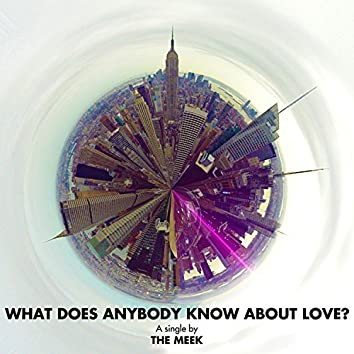 What Does Anybody Know About Love?