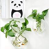 Jarrón/Pecera Colgante de acrílico, Florero de Vidrio Transparente para Colgar Decoración de Flores Plantas para Decoración del Hogar y Oficina
