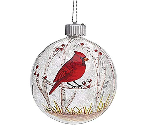 Burton and Burton 9727670 Led Red Cardinal Christmas...