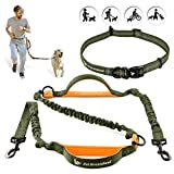 Hands Free Leash for Walking - One/Two Medium to Large Dogs