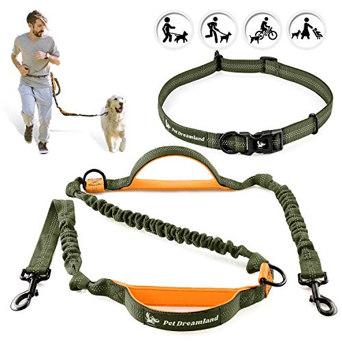 Pet Dreamland Hands Free Dog Leash for Running Medium to Large Dogs  Professional Shock Absorbing Bungee Harness  Reflective Dog Walking Waist Belt Leash