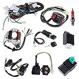 Liseng Bobina de estátor eléctrico, arnés de cables, relé magnético para 4 tiempos, ATV 50 cc 70 cc 110 cc 125 cc Pit Quad Dirt Bike Go Kart