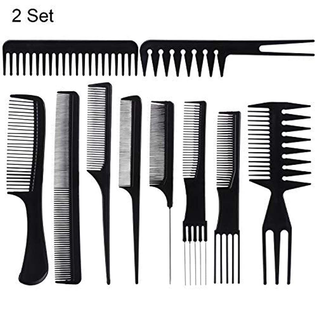 哀れな下手広まった20 Piece Professional Styling Comb Set for Making hair style [並行輸入品]