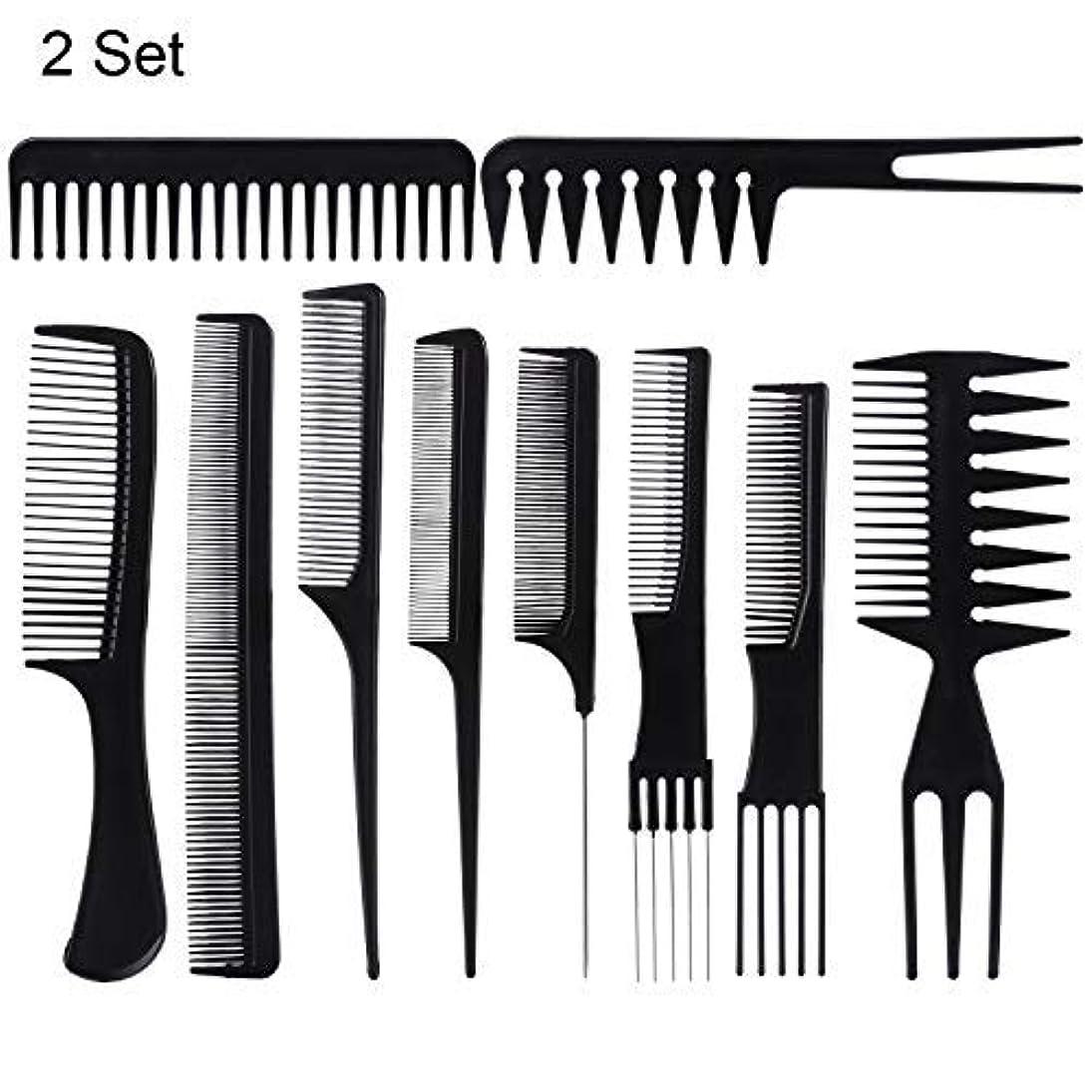 甲虫寛大なビーム20 Piece Professional Styling Comb Set for Making hair style [並行輸入品]
