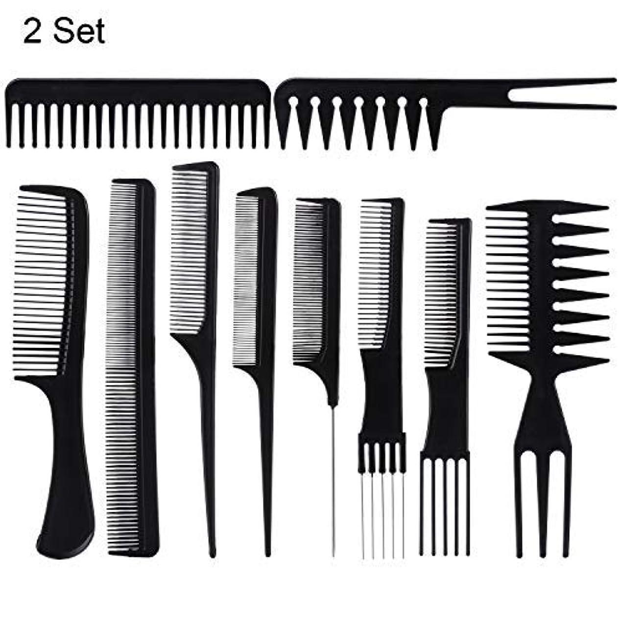 魅力集中所有権20 Piece Professional Styling Comb Set for Making hair style [並行輸入品]