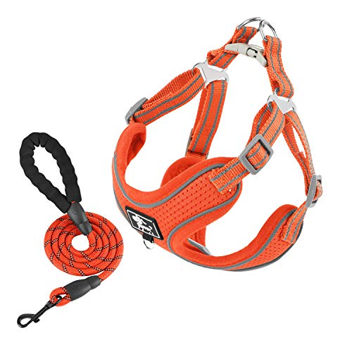 Timormode Reflective Dog Vest Harness with Heavy Duty Dog Leash Comfortable Fit Adjustable Breathable Mesh Pet Puppy Doggy Harness for Walking Training 03 Orange Leash Set Medium