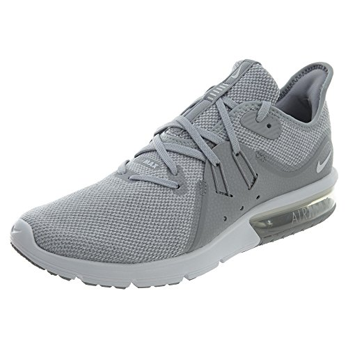 Nike Herren Air Max Sequent 3 Fitnessschuhe, Mehrfarbig (Wolf Grey/White/Pure 003), 44 EU