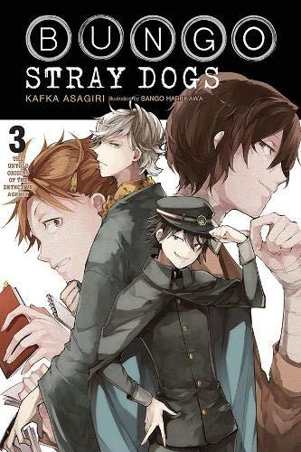 Bungo Stray Dogs, Vol. 3 (light novel