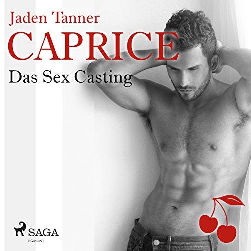 Das Sex Casting Titelbild