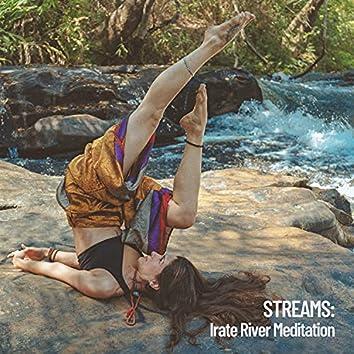 Streams: Irate River Meditation
