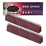 Defender Spikes, Wall Spikes, Upgraded Cat and Bird Repellent Fence Spikes, Plastic Deterrent Anti Theft Climb Strips to Keep Roosting Pigeons Racoons Squirrel& More -10pack [14.5FT]