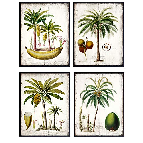 Palm Tree Decor - Tropical Wall Decor for Kitchen, Dining Room, Living Room - Beach House Wall Decor - Vintage Rustic Boho Home Decoration or Gift for Women, Men - 8x10 Picture Wood Sign Print Set