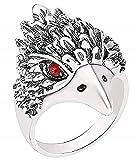 EVRYLON Bague Aigle Muselière Oiseau Indien Hawk Oiseau Ethnique Homme Garçon Femme Idée de Cadeau Taille T 1/2 Unisexe Noël Anniversaire Elle Bijoux Filles Garçons