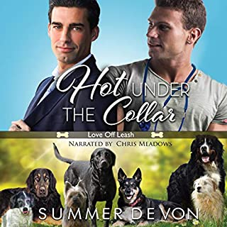 Hot Under the Collar  audiobook cover art