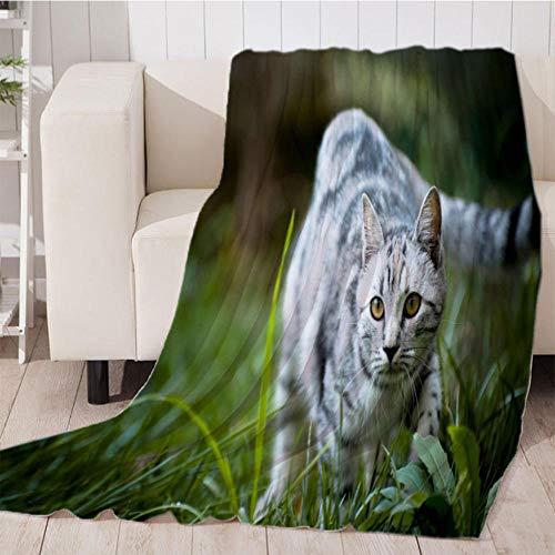 Bedsure Mantas para Sofás de Franela Caza de Gato Verde de Lujo de Grande Tamaño Manta Manta de Lana para sofá y Cama de 180x200cm