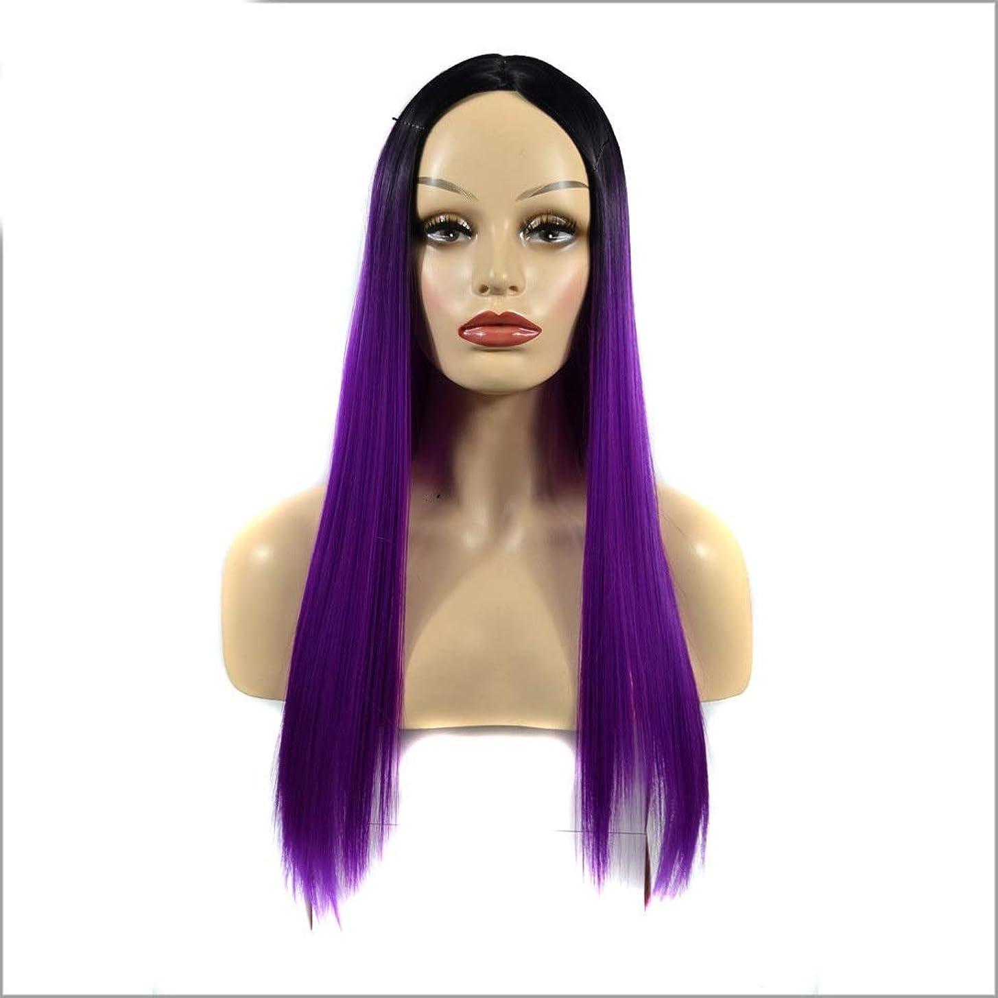 誘惑準備途方もないBOBIDYEE 女性のシルキーロングストレートパープル耐熱合成かつら前髪付きパーティードレスウィッグパーティーかつら (色 : 紫の, サイズ : 60cm)