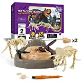Science Can Dinosaur Fossil Dig Kits for Kids, Dig it Up Dinosaur Excavation Kit, Dinosaur Discovery STEM Toys Science Kit for Kids 6-8