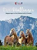 Der Haflinger: Begegnungen in Tirol, Südtirol und im Trentino