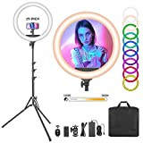 Neewer 19-inch RGB LED Ring Light with Stand, 60W Dimmable Bi-Color 3200K-5600K CRI 95+ with Special Scenes Effect for Selfie Makeup Salon Twitch Blogging YouTube Video Shooting and Live Streaming etc
