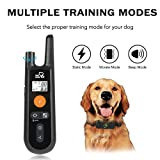 Dog Training Collar - Rechargeable Dog Shock Collar with Beep, Vibration and Shock Training Modes, Rainproof, Long Remote Range, Adjustable Shock Levels Shock Collars for Dogs with Remote