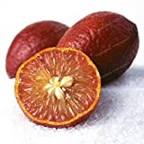 Generic Fresh 30 pcs Semillas de frutos de limón rojo para plantar Rojo oscuro