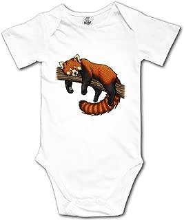BBCute Boys Red Panda Baby Infant Bodysuit - Short Sleeve Onesie Romper White