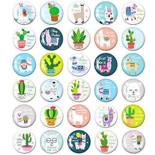 MORCART Alpaka Motivierend Kühlschrankmagnete Lustige Geschenk für Küche Schulschränke Klassenzimmer Büro Kabine Magnettafel Dekorative Magnete Geschenke für Erwachsene Kinder