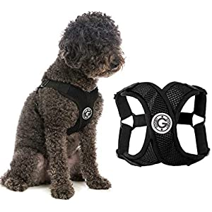 Gooby Dog Harness – Comfort X Step-in Small Dog Harness with Patented Choke-Free X Frame – Perfect on The Go No Pull Harness for Small Dogs or Cat Harness