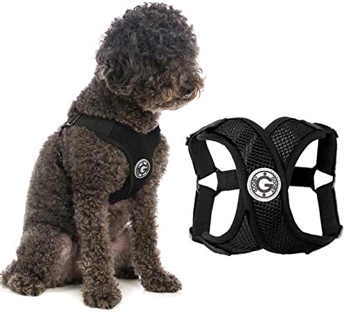 Gooby Dog Harness - Black, Large - Comfort X Step-in Small Dog Harness with Patented Choke-Free X Frame - Perfect on The Go No Pull Harness for Small Dogs or Cat Harness
