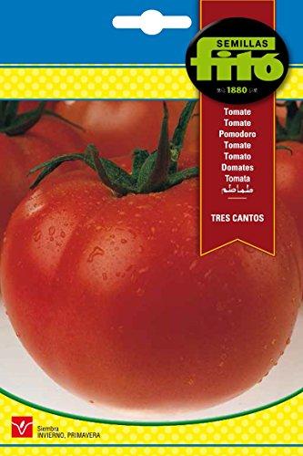 Semillas Fitó 293 - Semillas de Tomate Tres Cantos