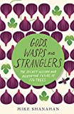 Gods, Wasps and Stranglers: The Secret History and Redemptive Future of Fig Trees (Paperback)
