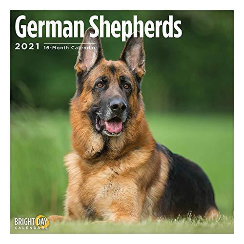2021 German Shepherds Wall Calendar by Bright Day, 12 x 12 Inch, Cute Dog Puppy