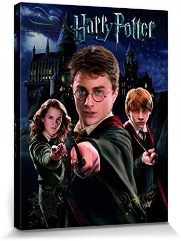 Harry Potter 1art1 Harry Ron Hermione Cuadro, Lienzo Montado sobre Bastidor (40 x 30cm)
